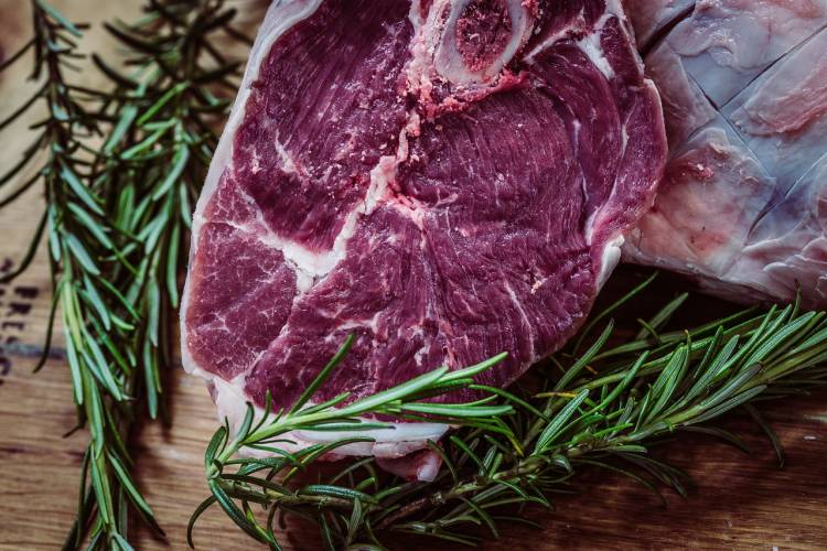 Caveman Diet Plan: Pros and Cons