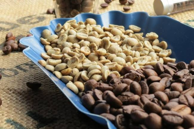 Green Coffee Bean Diet Helps to Shed Pounds