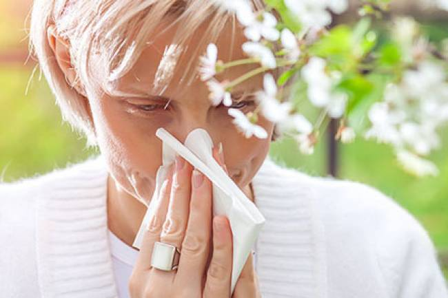 Natural Remedies for Hay Fever