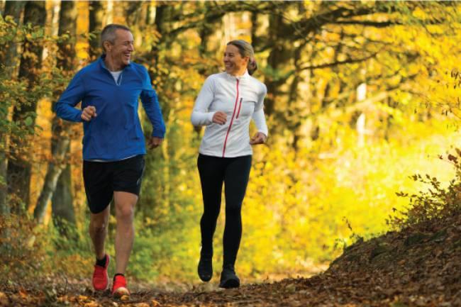 Health Benefits of  Chondroitin