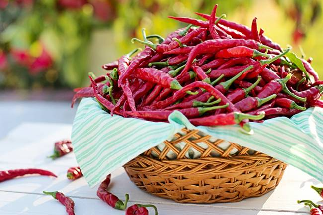 Health Benefits of Capsicum / Capsaicin